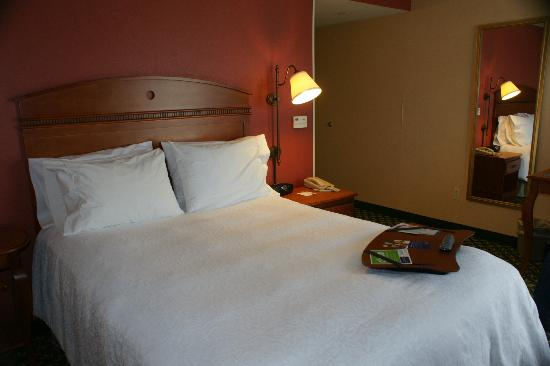 Hampton Inn Mountain Home: Room