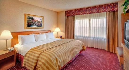 Wyndham Glenview Suites Chicago North : King Bed Suite