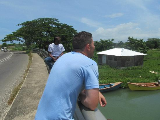 Talk of the Town Tours: Taking in the scenery