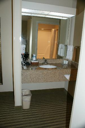 Comfort Inn: Washroom