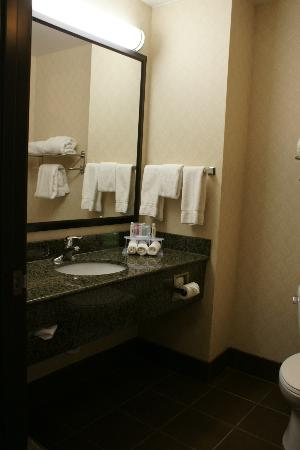 Holiday Inn Express Troutville-Roanoke North: Washroom