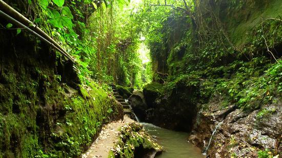 Magilla Bali Tours照片