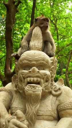 Magilla Bali Tours: Monkey sitting on statue