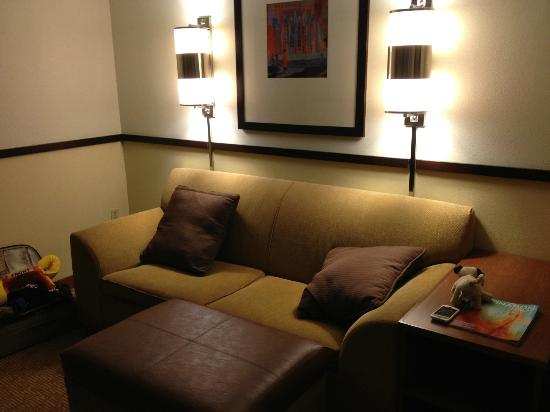 Hyatt Place Dallas/North Arlington/Grand Prairie: Couch/sleeper area