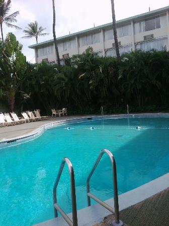 Airport Honolulu Hotel: Pool