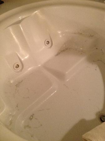 Grand Crowne Resort: Filthy jacuzzi tub- this is after running the jets and draining!