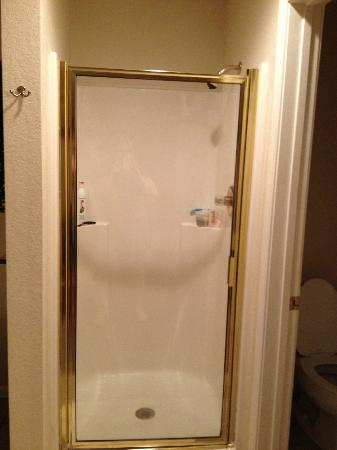 Grand Crowne Resort: Teensy tiny shower stall IN the bedroom area- wtf?
