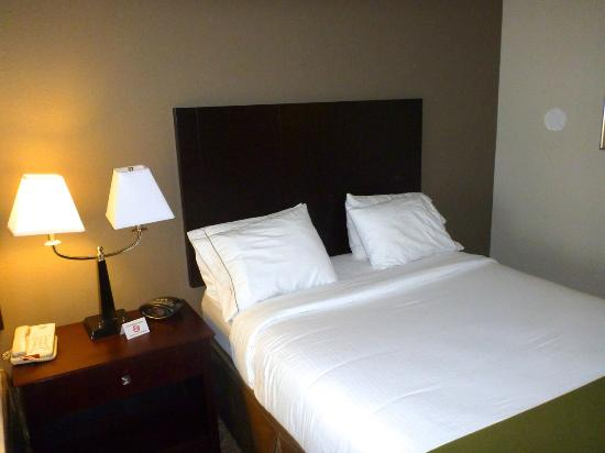 Holiday Inn Express Hotel & Suites Palatka Northwest: The bed looks fairly routine, but so does the TV, micro, and fridge