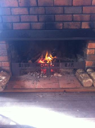 Pepper Tree Restaurant & Bar : seat by the open fire