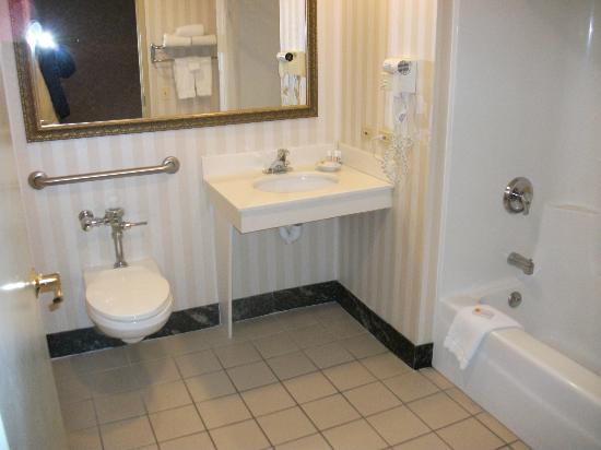 Chicago O'Hare Garden Hotel: clean..
