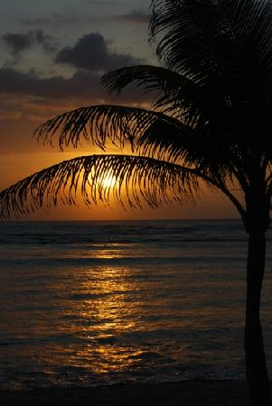 IBEROSTAR Paraiso Del Mar: beach sunset