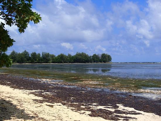 Peleliu Island Tours