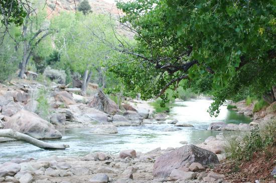 Zion Canyon Campground: this is looking downstream while standing up at the campsite