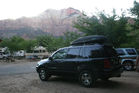 Zion Canyon Campground : View the other direction towards the RV's and the checkin area (behind me is the river)