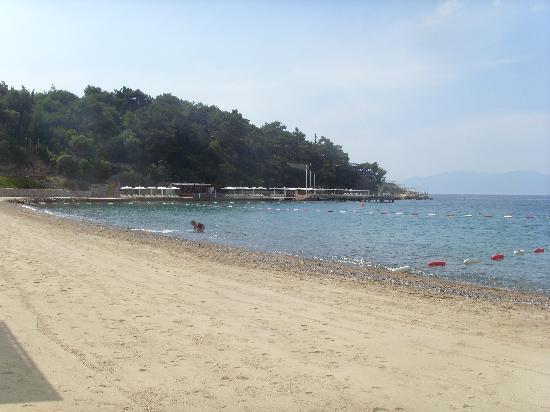 Club Med Bodrum Palmiye: la plage depuis l'école de voile