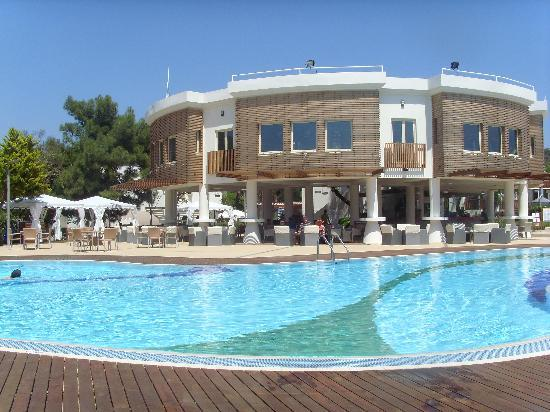 Club Med Bodrum Palmiye : piscine et bar de jour