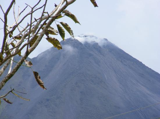Arenal Volcano Inn: VIEW FROM RESTAURANT