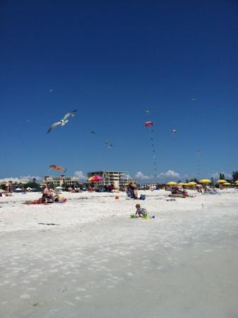 Arvilla Resort Motel Treasure Island: kites on beach
