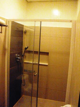 Go Hotels Tacloban: Shower