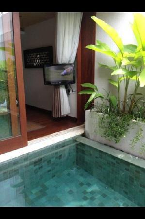 Maca Villas & Spa : TV viewed in the pool