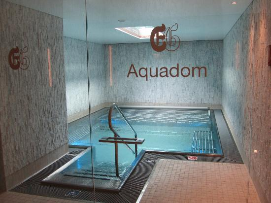 ERMITAGE Wellness- & Spa-Hotel: aquadom
