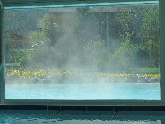Wellness & Spa Hotel Ermitage: steaming pool