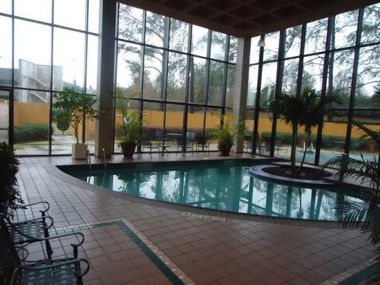 Sheraton Atlanta Airport Hotel: Pool