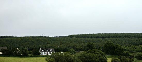Kilmore Lodges: Surrounding area