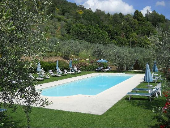 Podere Casarotta: Swimming pool