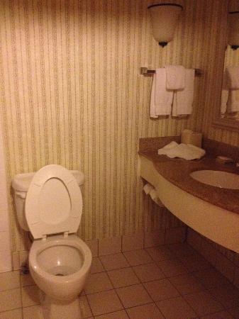 Hilton Garden Inn Williamsburg: Bathroom