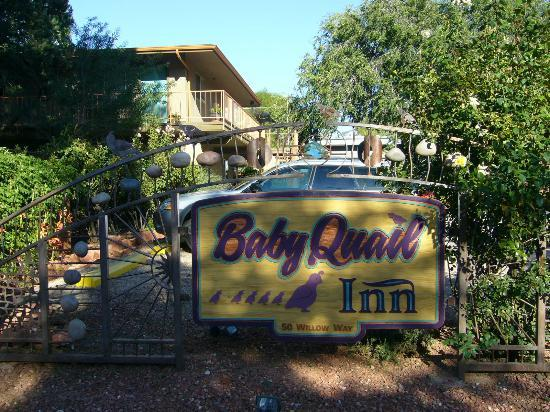 Baby Quail Inn: D
