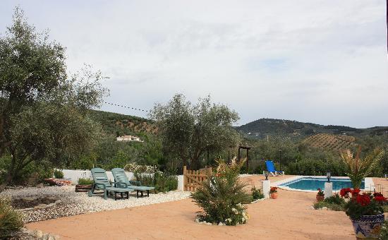 Cortijo del Sueno: Een prachtig uitzicht op de olijfboomgaarden