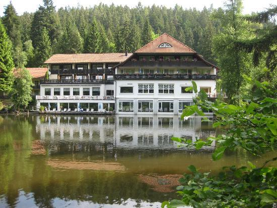 Hotel Langenwaldsee: View from path (back of hotel)
