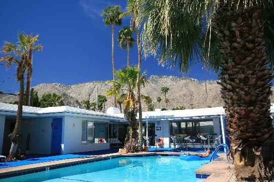 Palm Springs Rendezvous: Pool