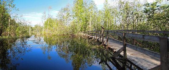 Muurame, فنلندا: Muurame, Nature trail