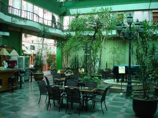 Camellia Hotel : Dining