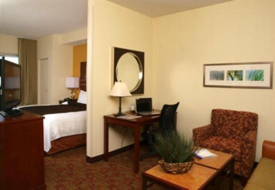 SpringHill Suites by Marriott Pigeon Forge: Queen room