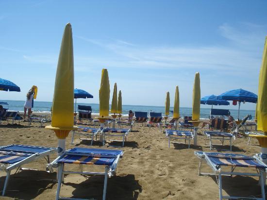 Hotel Mirafiori: вид на пляж