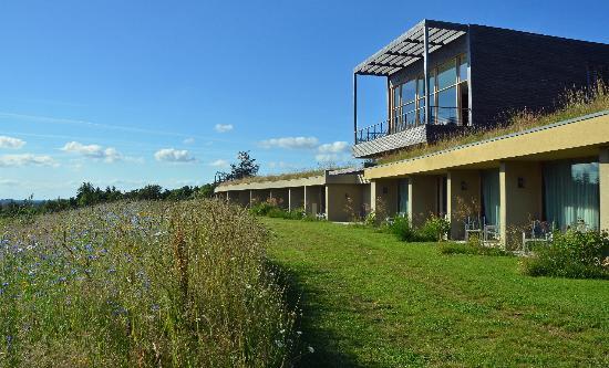 La Gree des Landes: Les terrasses des chambres surplombées par la terrasse du spa