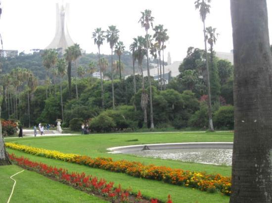 Le Jardin d'Essai du Hamma: L'allée principale 5