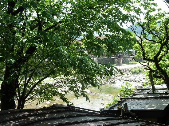Sumiyoshi Ryokan: View of river through the trees