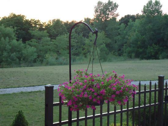 Hampton Inn & Suites Wilmington: Sitting on the Patio