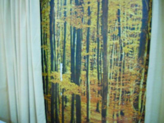 Rio Aeroporto Hotel: vista pra uma floresta nórdica só que de mentirinha...view/ no window just this stupid sticker