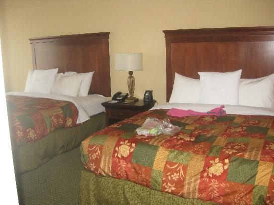 Homewood Suites Tampa Airport - Westshore: Super comfy beds