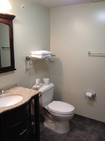 MainStay Suites Winnipeg: bathroom