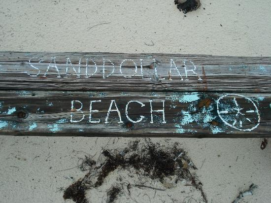 St Francis Resort : on sand dollar beacj