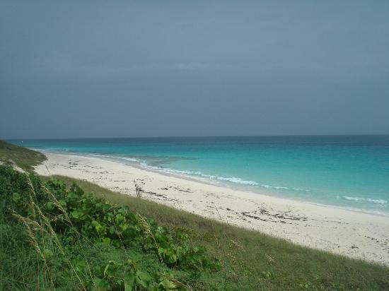 St Francis Resort : NE view of beach