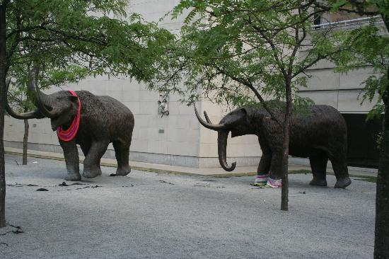 Indiana State Museum: Outside of Museum
