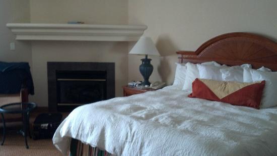 Hilton Garden Inn St. Charles: hotel room