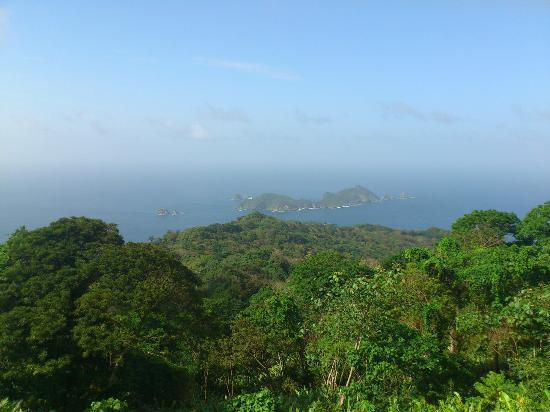 "Northeast Coast, Tobago: There is St. Giles or ""Little Tobago"" called by locals . View from Tobago"